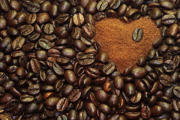 Perch l australia ha il caff migliore e come diventare for Soggiorni linguistici inglese